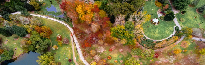 Aerial view of the Adelaide Botanic Gardens