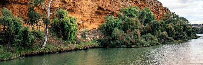 Murray river rock, water and greenery