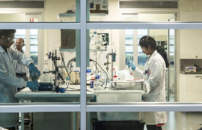 Medical sciences image.