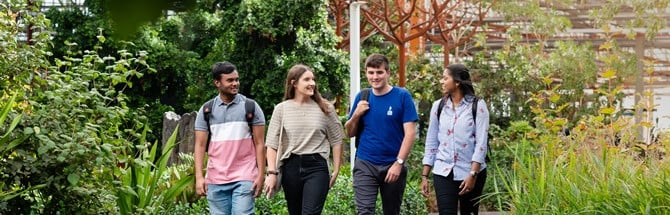 Four students walking together in greenery