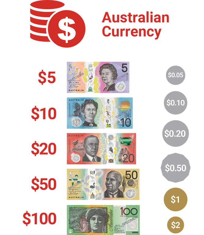Infographic of Australian currency - $5 note, $10 note, $20 note, $50 note, $100 note
