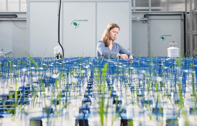 Agribusiness image.