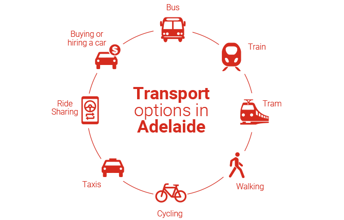 Infographic of Transport options in Adelaide - bus, train, tram, walking, cycling, taxis, ride sharing, buying or hiring a car